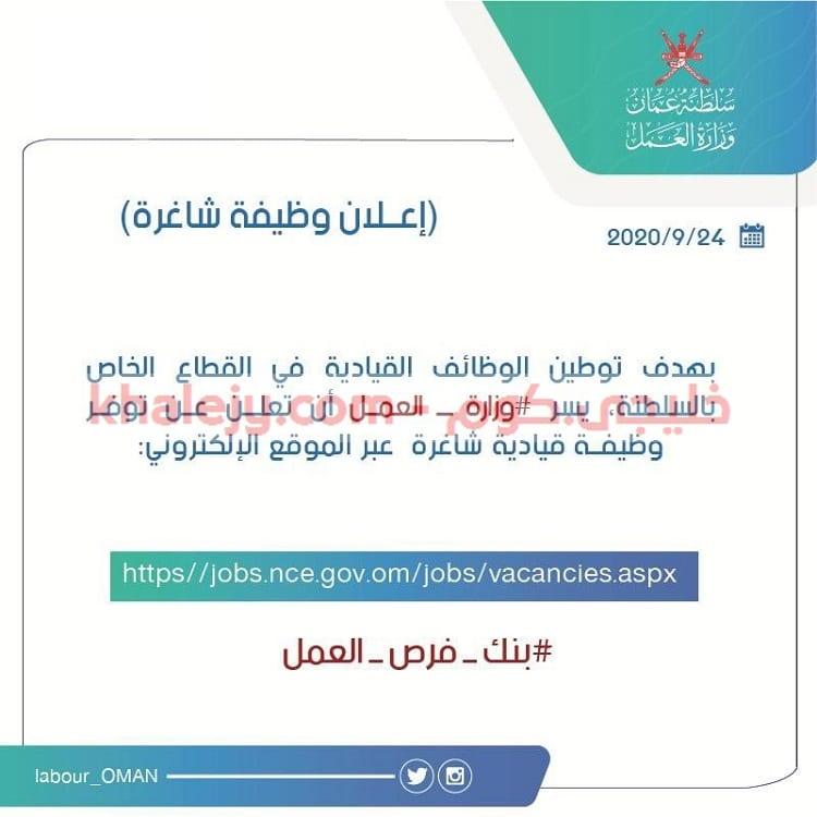 وظائف وزارة العمل إعلان الوظائف القيادية الشاغرة بالقطاع الخاص