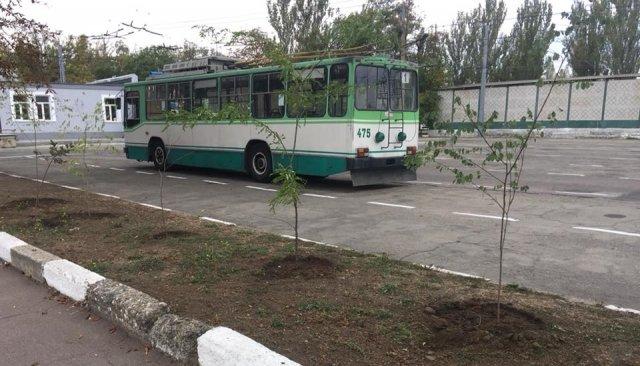 """В """"Херсонэлектротрансе"""" успели посадить деревья до праздника Покрова"""
