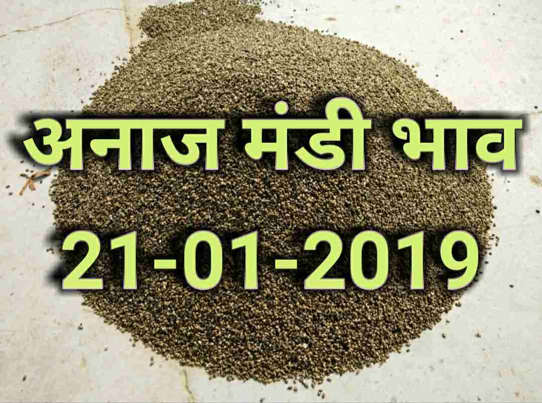 anaj-mandi-bhav-21-january-2019 , mandi rates