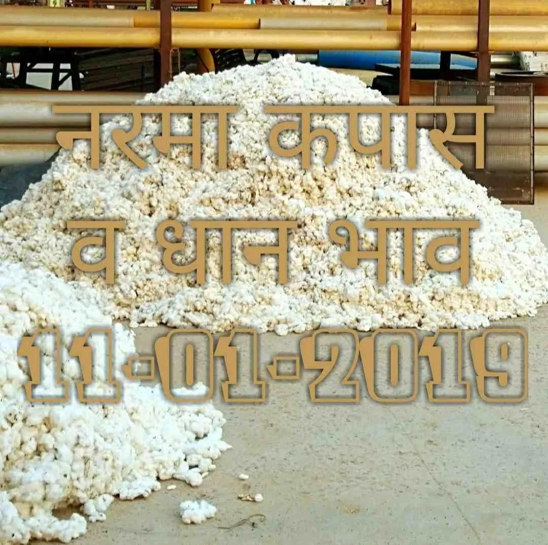 mandi-bhav-11-01-2019