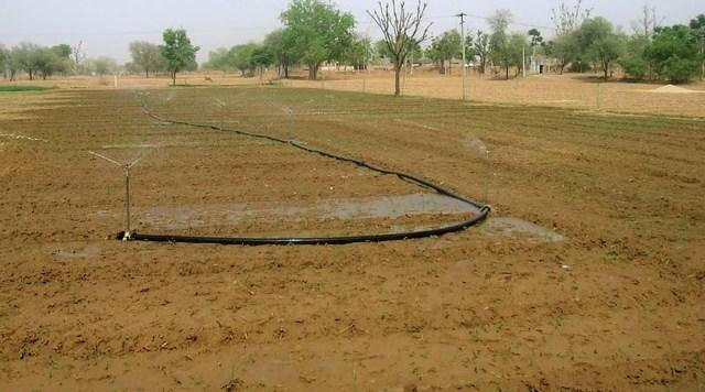 ऊसर सुधार कैसे करें ? रबी के मौसम में ऊसर सुधार कैसे करें ? - usar sudhar kaise kare in hindi