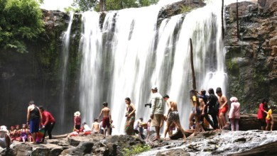 Photo of Ecotourism brings huge benefit in rural development