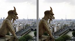 Chimäre, Notre Dame