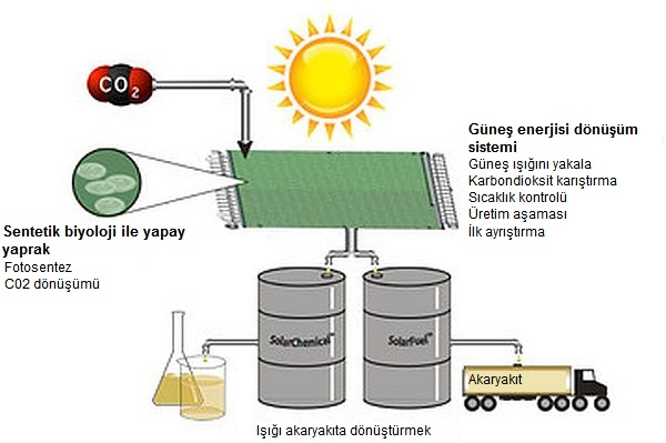 bill_gates-güneş_enerjisi-güreş_paneli-temiz_enerji-yeşil_enerji 26