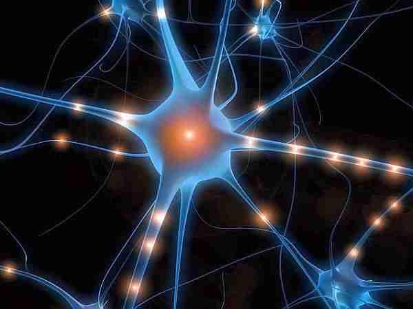 kuantum_bilinç-kuantum_bilgisayar-kuantum-bilinç-özgür_irade