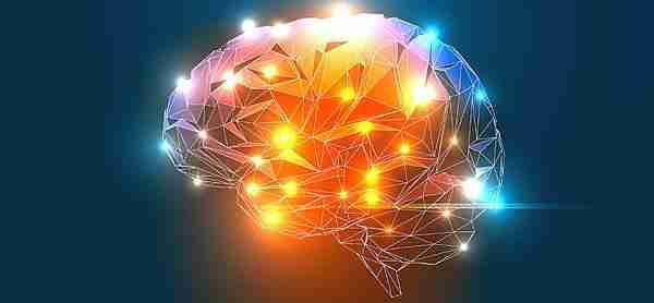 beyin-yazılım-algoritma-çekirdek_kod-yapay_zeka