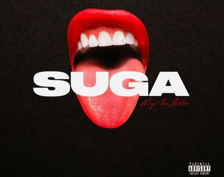 Megan Thee Stallion Drops New Album -Suga