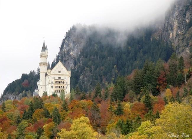 Neuschwanstein Castle. Photo: TongMai