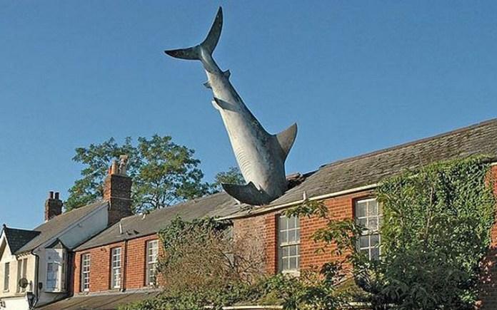 The Shark at Headington