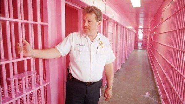 pink-jail-khurki-net