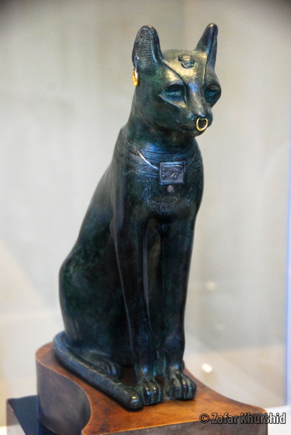 Egyptians - The Ultimate Cat People