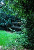 A beautiful bench hidden away in a secluded spot (Yes I love alliteration!)