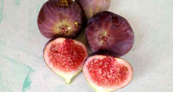 Uses Of Fig Leaves