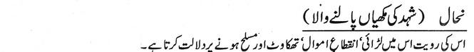 shahed ki makhian palne wala