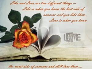 Like And Love