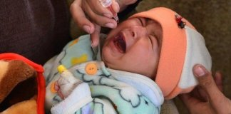 Anti-polio campaign to begin in KP on Monday