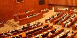 Senate body passes resolutions against US intervention in CPEC affairs