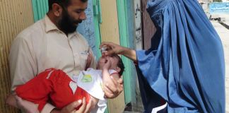 Anti-polio campaign will begin in Khyber Pakhtunkhwa tomorrow