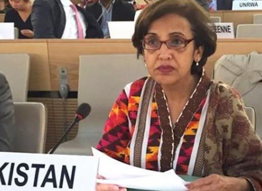 Pakistan's resolve to fight terrorism has not diminished: Tehmina