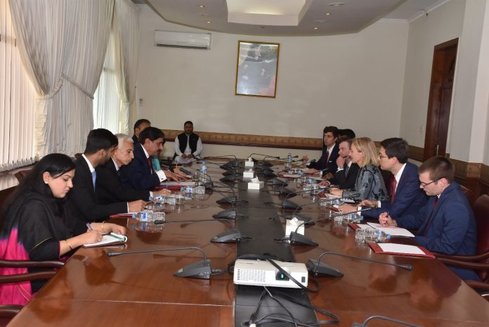 Pakistan wants early resolution of Afghan issue: Janjua
