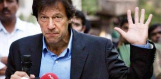 Shafqat Mehmood says Imran will not cast vote in Senate elections