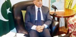 Shehbaz Sharif invites MPA-elect Jugnu Mohsin to join PML-N