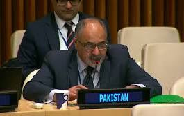 Pak welcomes UN recommendation for inquiry commission for HR violations in IOK