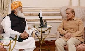 Fazl, Shahbaz discuss strategy about presidential election