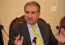 India failed to push Pakistan into FATF black list: FM Qureshi