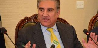 Opposition political parties divided on JUI-F's Azadi March: FM Qureshi
