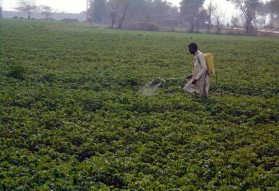 KP Govt plans mega project to increase agri production