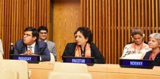 Pakistan's ambassador to the UN elected as vice president of UN's economic arm