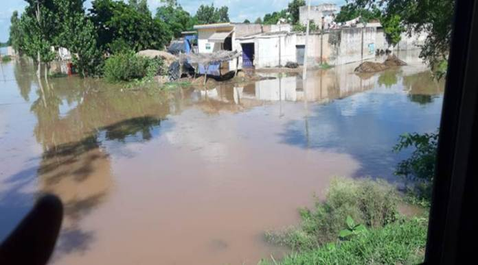 Several villages submerged, scores evacuated as River Sutlej floods