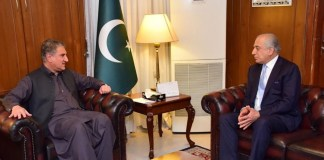 Pakistan to continue efforts for Afghan peace process: FM Qureshi