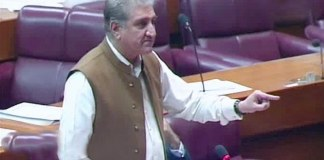 FM Qureshi urges opposition not to 'minimise' efforts on Kashmir issue