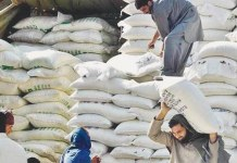Flour crisis deepens in Khyber Pakhtunkhwa as Punjab halts supply