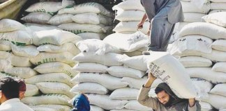 Govt forms FIA special team to investigate wheat flour crisis