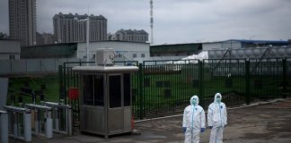 Lockdowns ease amid promising drops in virus deaths