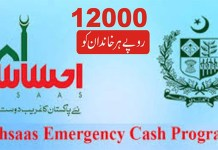 Coronavirus: Payments under Ehsaas Emergency Cash program underway