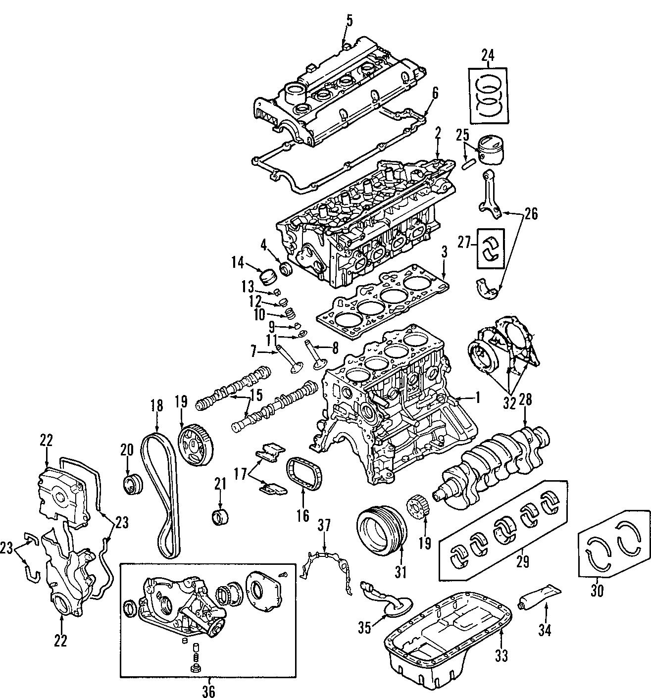 202c226p02r