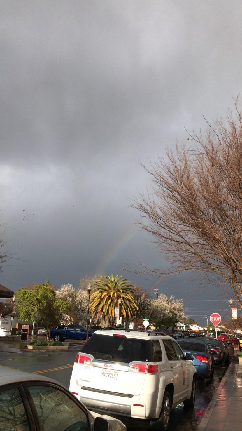 TWITL – week nine – rain and sunshine