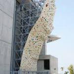 東京オリンピック2020|青海アーバンスポーツ会場で行われるスポーツクライミングってどんな競技?