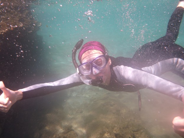 Great snorkeling opportunites every day on this cruise