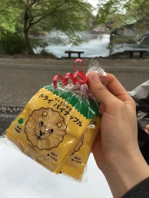 dry_pineapple2