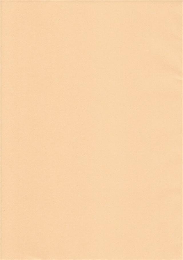 サモンナイト2 エロマンガ同人誌1023