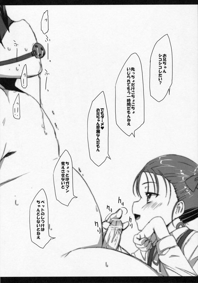 アクセルワールド エロマンガ・同人誌31022