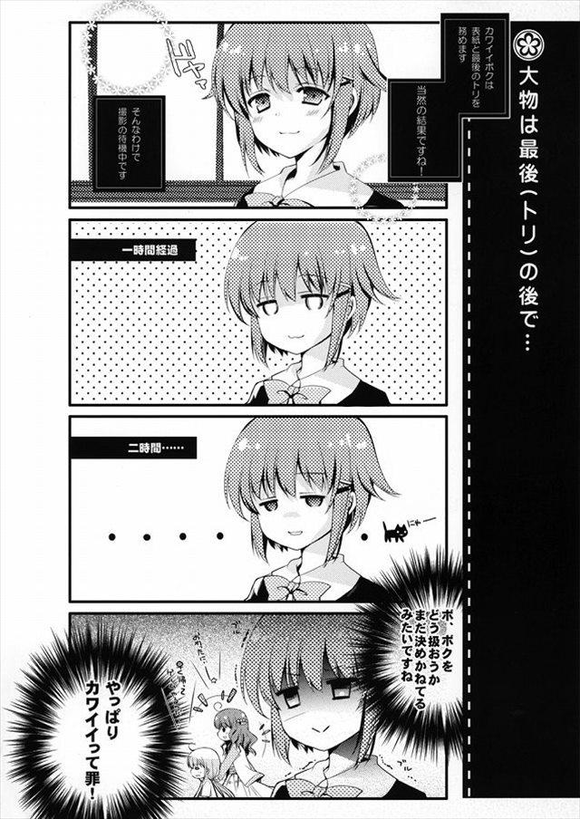 アイドルシリーズ エロマンガ・同人誌33013