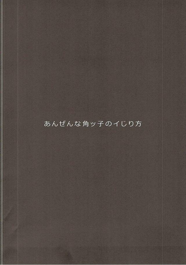 anzennatsunokkono003