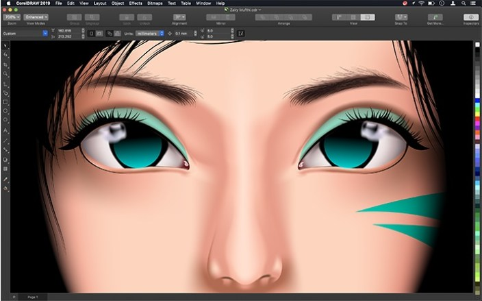 CorelDRAW Graphic Suite 2019 Serial Number