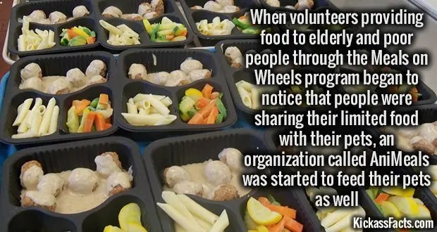 1003 Meals on Wheels